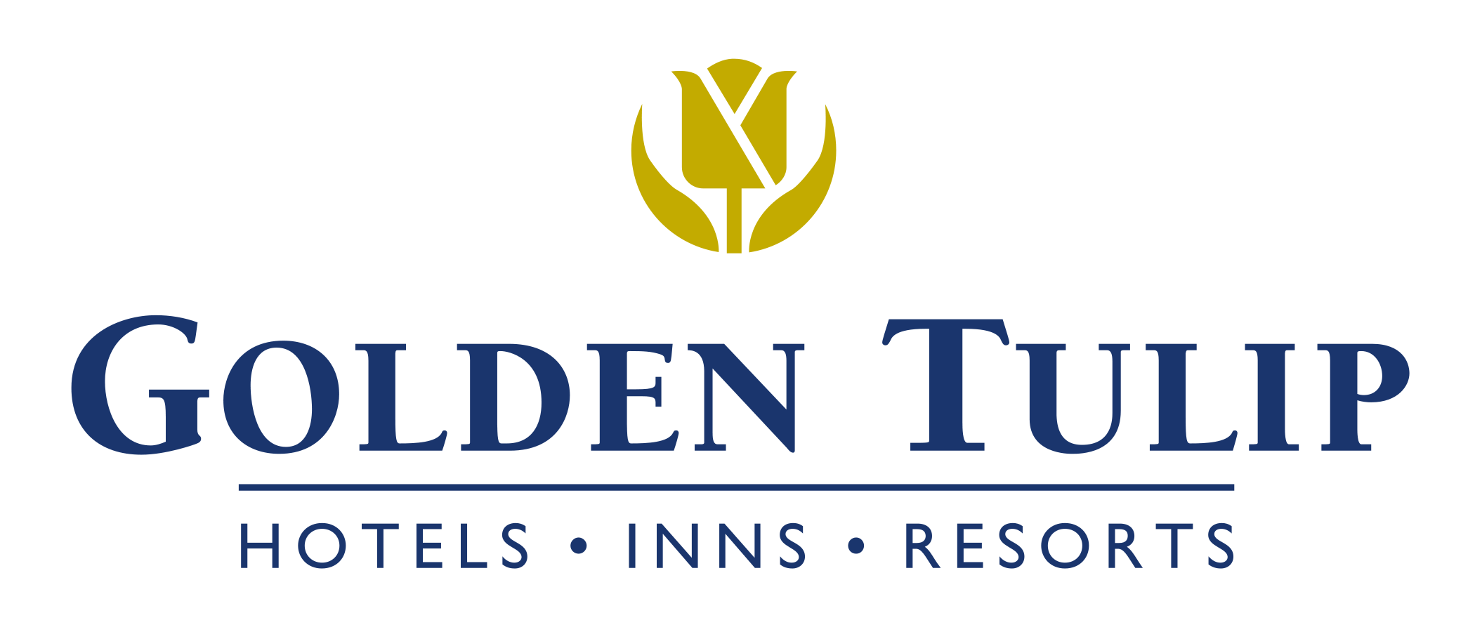 dampf-bluetooth-hotel-audio-golden-tulip-hotels